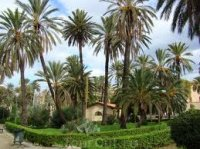 Пальмовый парк (Palmitos Park) Часть 2